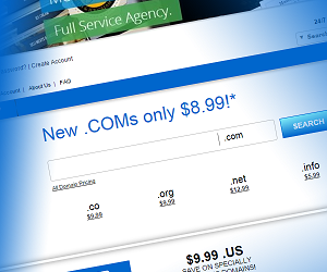 Get a  Domain Name for only $8.99/yr